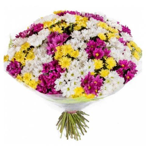Kucak Dolusu Kır Çiçeği
